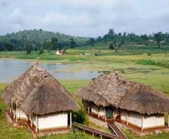 Wayanad Vacation