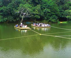 Wayanad Tourism Honeymoon